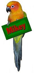 Mikey!